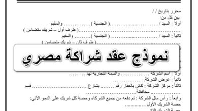 نموذج عقد شراكة مصري